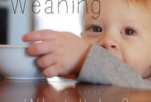 BabyLeadWeaning
