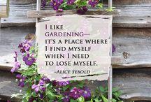 gardening / by Ellen Helmke