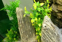How to decorate your aquarium with silicone aquarium plants / Get some ideas how to decorate your tank using a mixture of natural rocks, 3D background and silicone plants.