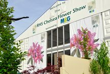 Signage | RHS Chelsea Flower Show 2011 / Like what you see? Find out more at http://bit.ly/2veeRyg