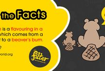 Smoking fact bank / All the weird and wonderful facts about smoking, in one place. www.thefilterwales.org