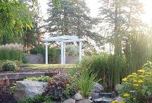 The Gardens in June