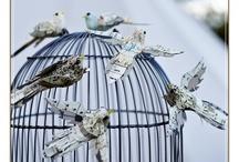 Uccelli di carta e...