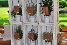 pallet cassette fiori giardinaggio