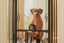 protecciones p cachorros