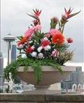 Flower Arrangements / by Tea Ken