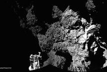 Rosetta landing