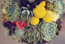 Inspiration - Gardens and Flowers