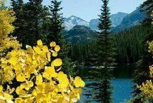 Amazing nature shots