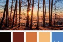 color mood