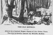 Maple Sugaring / Historic Vermont newspaper content concerning a Vermont tradition: maple sugaring / by Vermont Digital Newspaper Project/VTDNP