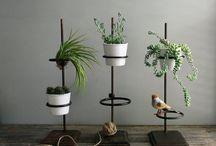 Gardening / by Wilma Johnson