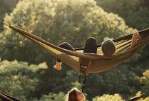 Hammock research