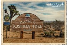 Joshua Tree, California / Joshua Tree is one of the gateway communities to Joshua Tree National Park which is a haven for those seeking outdoor adventures and escape from the concrete jungle.