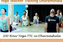 Yoga Teacher Training Dharamsala / Rishikul Yogshala offers 200 hour yoga teacher training in Dharamshala, India
