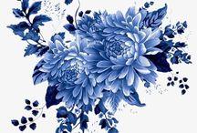 Chrysanthemum ideas