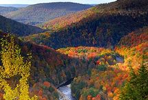Pennsylvania Beauty / by Susan Barrows
