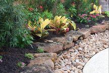 Chook garden