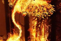 ohniváci