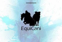Blogposts / Blogposts von equi-cani.de