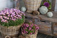 deko outdoor herbst