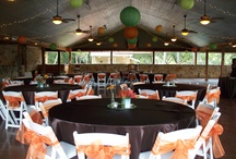 Fall Outdoor Wedding Decorations / Gazebo ceremony followed by reception in the pavilion.  Brown satin linens with orange chair ties and simple centerpieces.  27 green & orange lanterns hang from the ceiling.