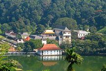 SRI LANKA avec DESTINATION SUR MESURE / Spécialiste du SRI LANKA à la carte, Partez à la découverte avec www.destinationsurmesure.com