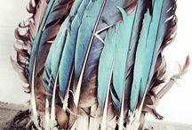 Native xX Gypsy Soul / One tribe.