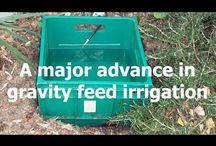 drip irrigation / DIY solar drip irrigation