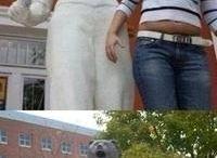 It makes me laugh