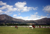 Franschhoek scenery & mountains