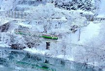 四季の華『冬』