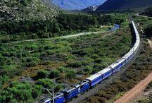 Blue Train Holiday