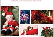 Christmas / gift ideas Christmas
