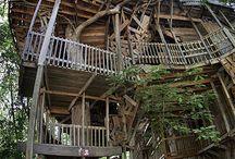 Badass Treehouse's