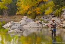 Sports & Recreation / Enjoy images from over a century of outdoor recreation in Arizona!