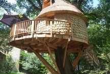 Tree Houses / by Taylor Hazlehurst