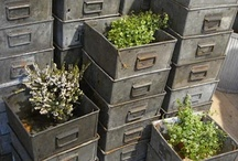 Urban Garden / Interior design inspiration and ideas for how to bring house plants and greenery into an industrial warehouse home or loft apartment with a balcony.