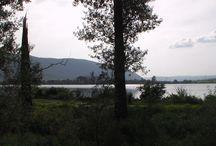 Fotografie prírody