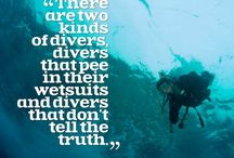 All things Diving