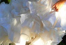 9 Settembre 2011, Villa Gamberaia, Florence. Flower Decor: La Rosa Canina FIRENZE / Wedding in Tuscany