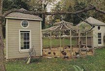 Birds enclosure
