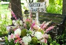 garden / by TERRY JENSEN