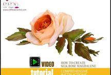 Çiçek videoları