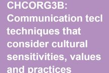 'Communicate Effectively with Diverse Groups and other Stakeholders