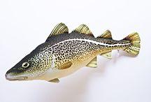 gatunki rybuszek / Rewelacyjne poduszki / maskotki w kształcie ryb