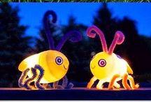 leuchtkäfer