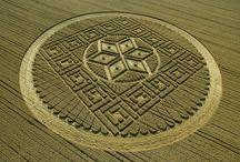 Alien Stuff / crop circles