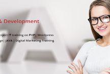OSK IT Solutions Nagpur