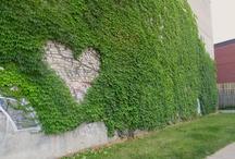 Hearts I heart / by Nathalie Rivard